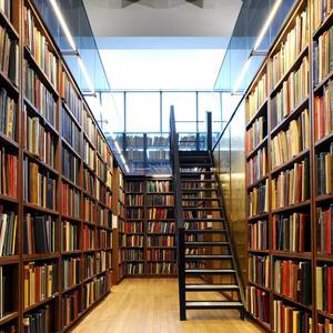 Библиотеки Пестово