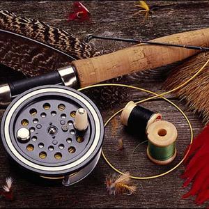 Охотничьи и рыболовные магазины Пестово
